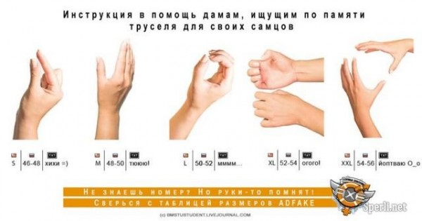 средний размер пениса в россии Лодейное Поле